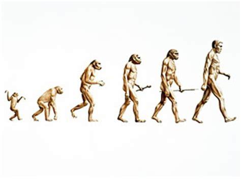 ESSAY VI: HUMAN EVOLUTION AND THE IMAGE OF GOD - Berea College
